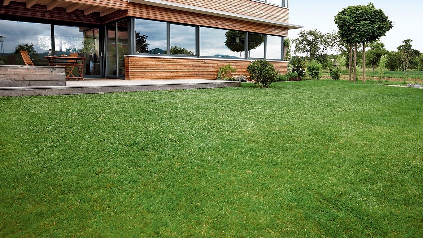 Après le scarifiage, la pelouse doit être protégée pour quelques jours. La pelouse peut ainsi récupérer dans les meilleures conditions du stress du scarifiage.